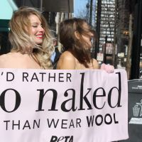 It Isn't a PETA Protest Until Girls Start Getting Naked In the Middle Of the Street